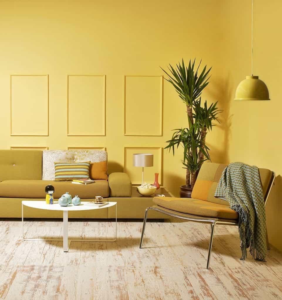 کاربرد رنگ در خانه