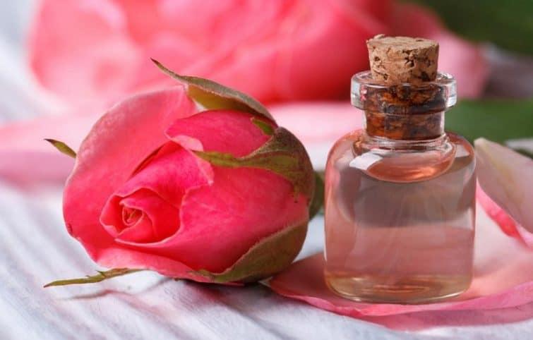 خواص گلاب برای سلامتی بدن، روان و زیبایی و انواع شکلها روشهای استفاده