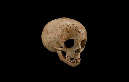 دانشمندان فسیلهای مربوط به فرزند یک نئاندرتال و دنیسووایی را کشف کردند