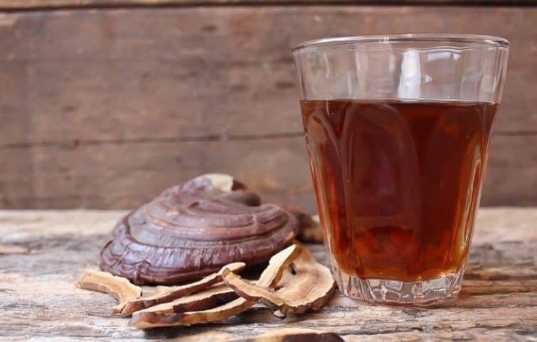 چای گانودرما و بررسی ۶ اثر شگفت انگیز آن بر سلامت انسان