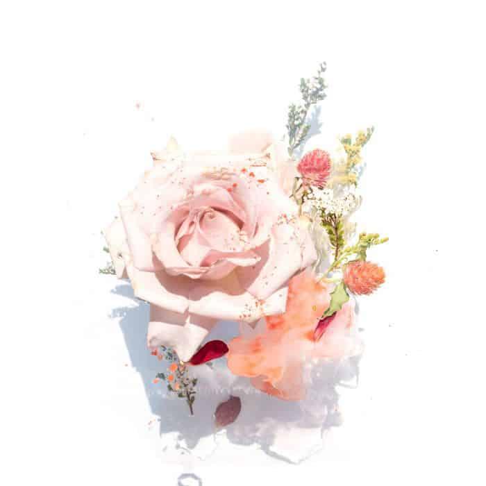 گلاب و فواید آن در زیبایی