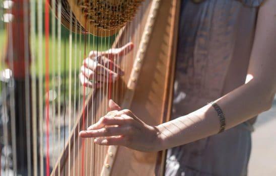 آشنایی اولیه و مختصر با ساز هارپ یا چنگ برای دوستداران نوازندگی