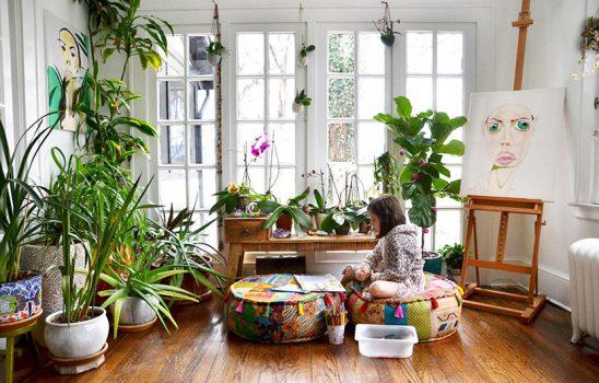 بهترین گیاهان آپارتمانی برای نگهداری در هر یک از فضاهای منزل