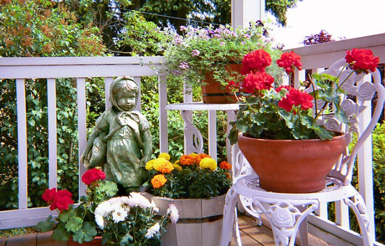 چند اشتباه رایج در گلکاری در گلدان که تازه کارها مرتکب میشوند