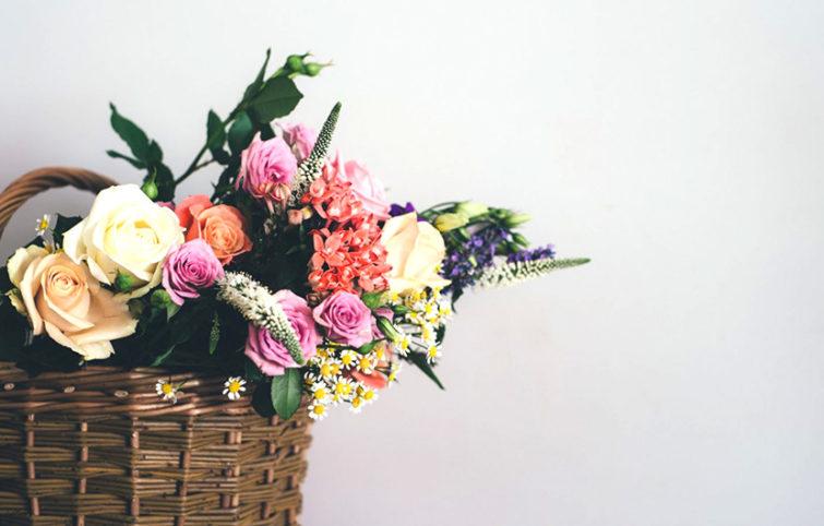 این گلهای زیبا بیشترین ماندگاری را پس از چیده شدن دارند