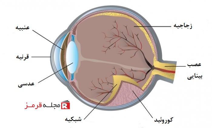 علل شایع درد چشم