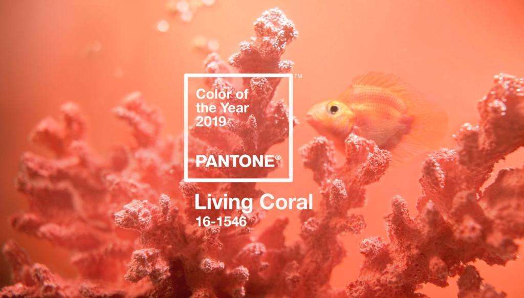 زیباترین و مد روزترین رنگ برای طراحی داخلی در سال 2019