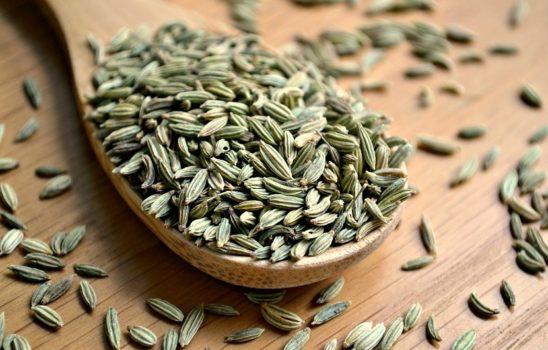 دانه رازیانه و نگاهی گذرا به فواید پرشمار این ماده غذایی مفید