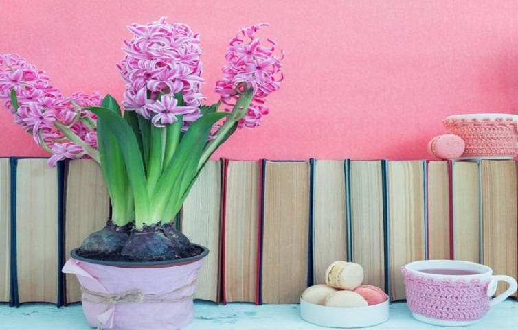 ۶ کتاب که با خواندن آنها سبک زندگی شما تغییر خواهد کرد