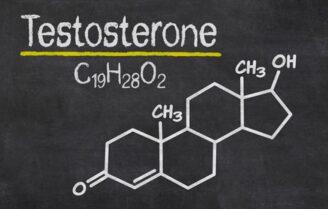 تستوسترون چیست