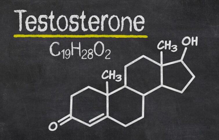 تستوسترون چیست و عدم تعادل آن چه عوارضی در مردان و زنان دارد؟