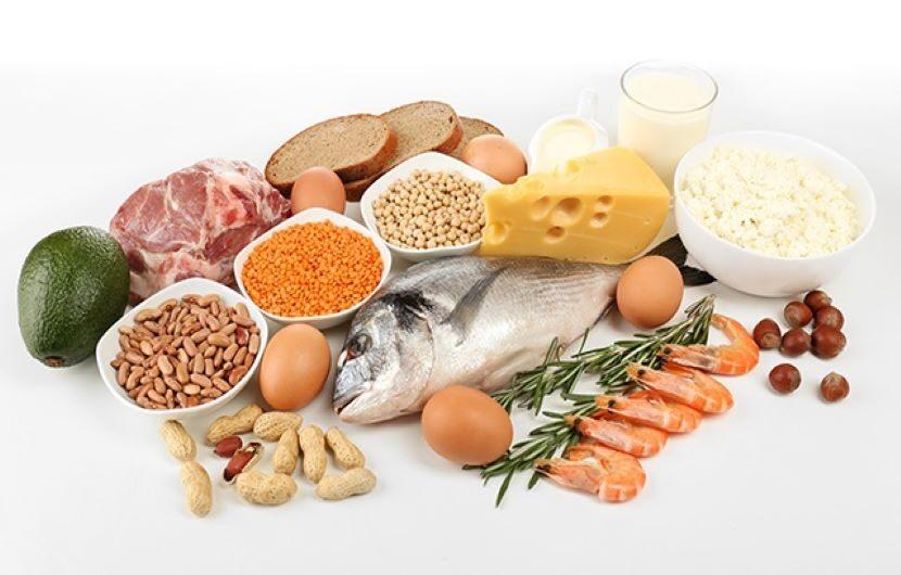 پروتئین چیست؟ همه چیز درباره مواد پروتئینی حیوانی و گیاهی و پودرهای پروتئینی