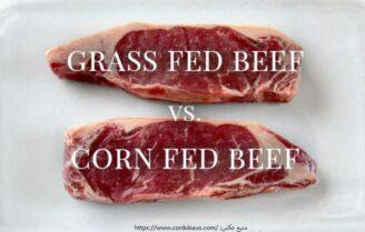 گوشت ارگانیک