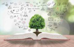 درخت دانش